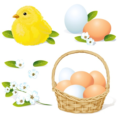 eggs in basket: vector easter and spring element isolated on white background