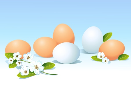 natural eggs and spring flowers on blue background