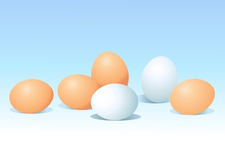 natural eggs on blue background