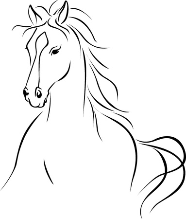 horses in the wild: horse illustration - black outline drawing