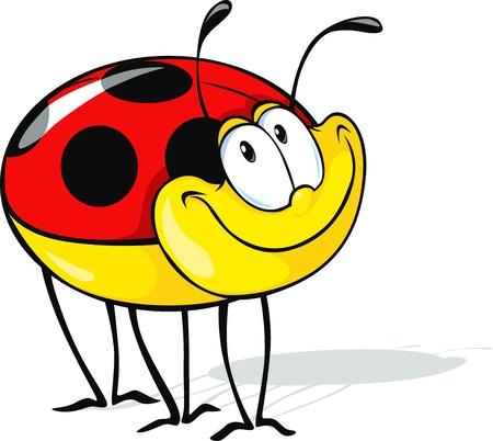cute ladybug cartoon isolated on white background