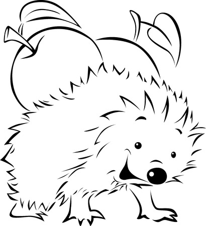 Hedgehog carries on his back an apple - black outline illustration Vector