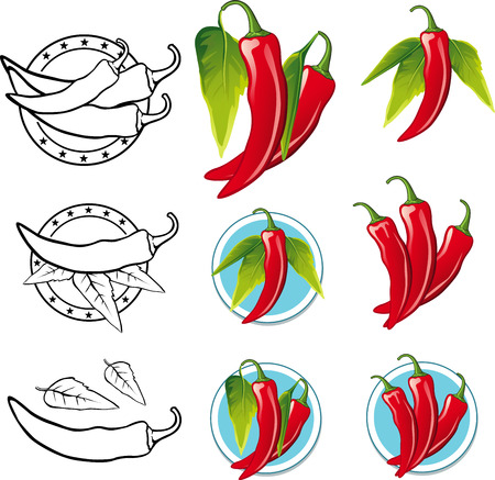 organic peppers sign: Chili Pepper illustration - Illustration picture Illustration
