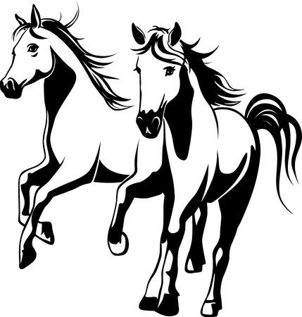 wilde paarden - zwart en wit vector illustration
