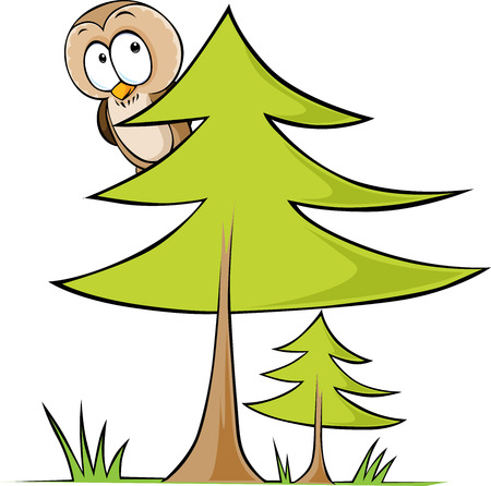 conifers: owl sitting on tree - vector illustration isolated on white background Illustration