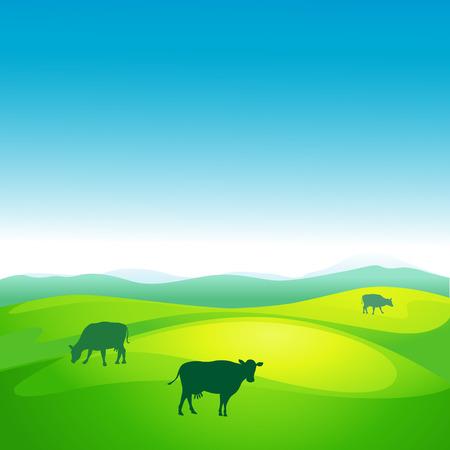 cow vector: cow grazes in a meadow - vector illustration
