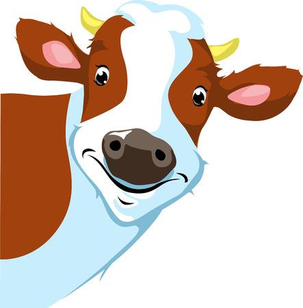 cow peeking  - vector illustration Vector