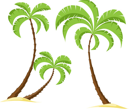 three palm trees: palm tree isolated on white background - vector illustration