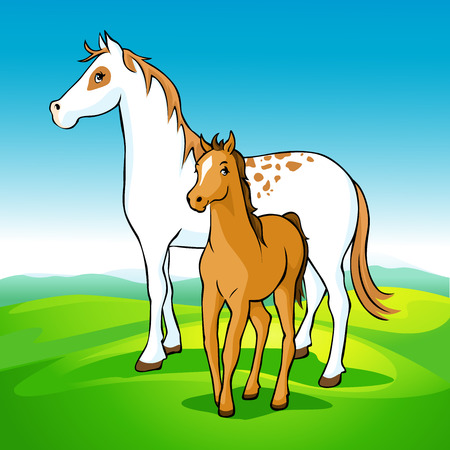 foal: horses on meadow - mare and foal, vector illustration