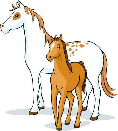 yegua: caballos - yegua y potro, ilustración vectorial Vectores