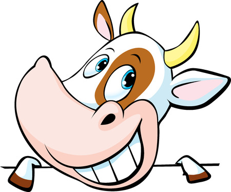 funny cow peeks out from behind a white surface - vector cartoon illustration