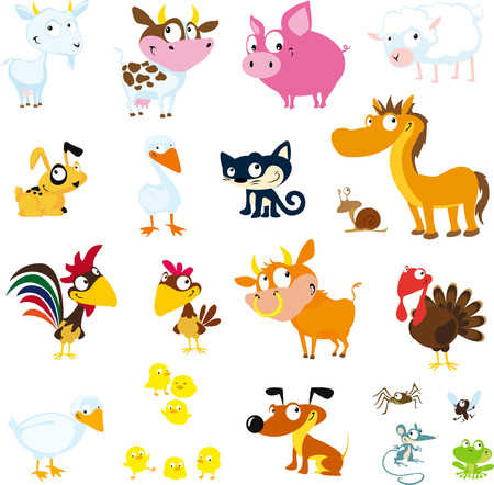cock duck: Set of simple images of farm animals - vector Illustration