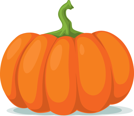 pumpkin - vector illustration Illustration