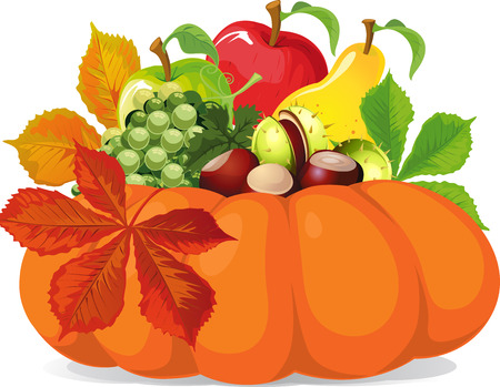 gourds: pumpkin with autumn leaves - vector illustration Illustration