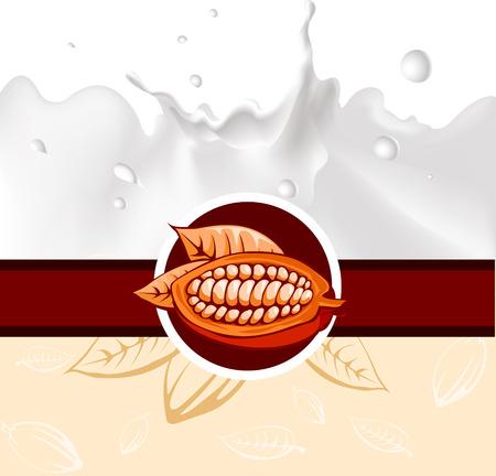 cocoa bean: cocoa bean design with milk splash