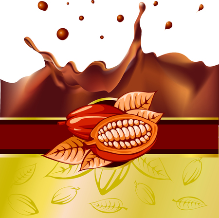 chocolate splash: cocoa bean design with chocolate splash - vector illustration