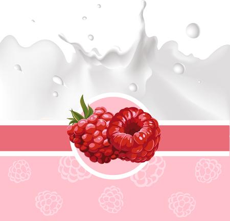 raspberry pink: pink design with raspberry and milk splash - vector illustration