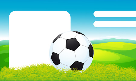 sports activity: soccer ball lying on the grass, frame design - vector illustration Illustration