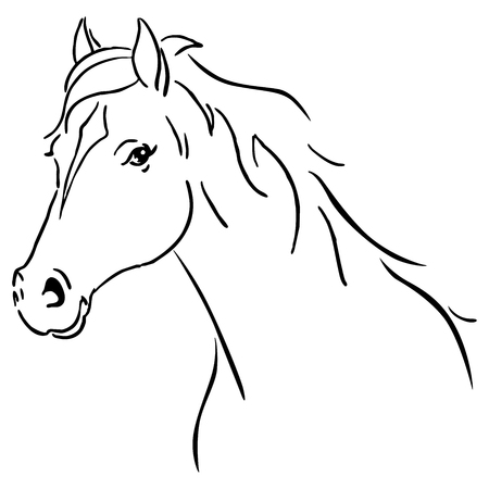 Black line horse sketch vector illustration Illustration