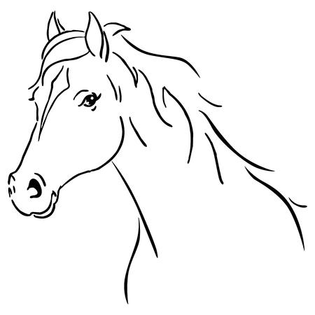 Black line horse sketch vector illustration Vettoriali