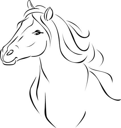 Horse Head Illustration Black Sketch - Vector