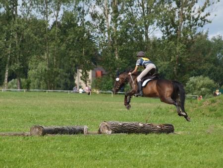 cross country: saltando las carreras de caballos - Cross Country Foto de archivo