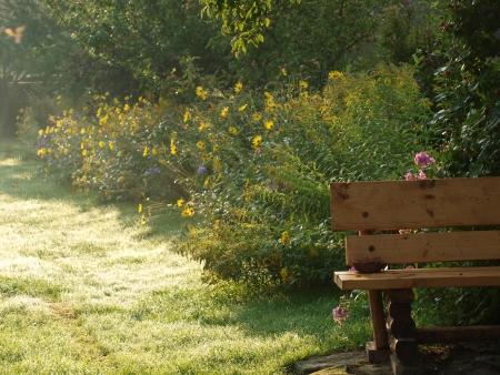illuminati: panchina nel giardino di fioritura illuminato sole del mattino Repubblica Ceca