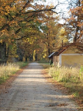 autumn landscape, southern Bohemia Czech Republic