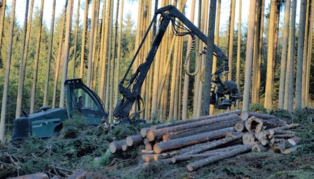 machine logging, South Bohemia, Czech Republic