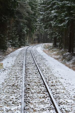 narrow gauge railroad: unique historic narrow-gauge railway. South Bohemia, Czech Republic Stock Photo