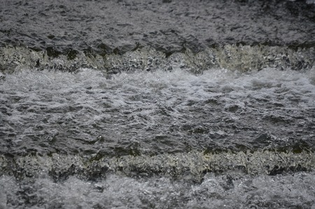 rapidly: rapidly flowing water on the winter river . South Bohemia, Czech Republic