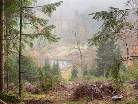 bohemia: autumn landscape, southern Bohemia . Czech Republic