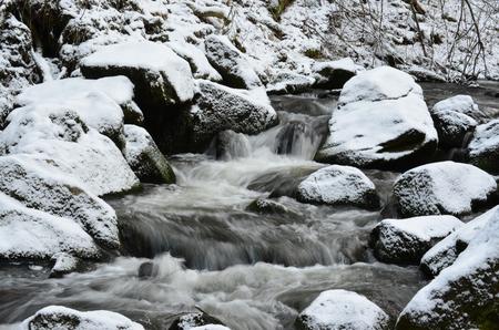 rapidly: rapidly flowing water . South Bohemia, Czech Republic