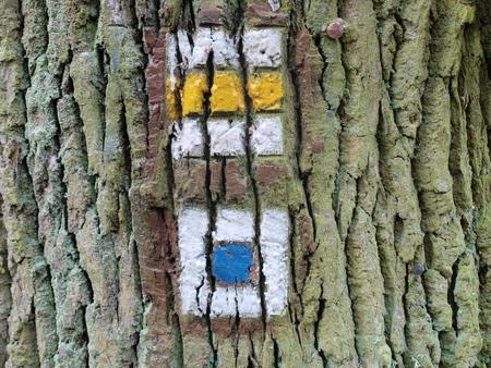 republik: tourist signposting on the bark of a tree. Czech Republic
