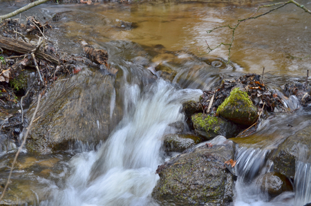 rapidly: Rapidly flowing water South Bohemia Czech Republic