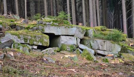 bohemia: blocks of stone in the forest South Bohemia Czech Republic