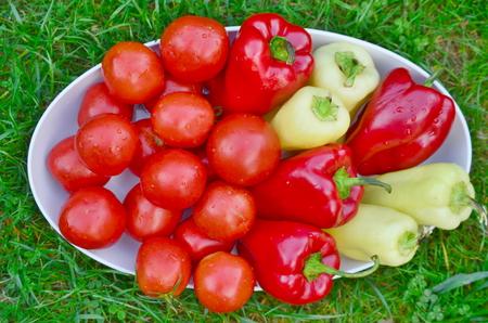 bohemia: bowl of vegetable, southern Bohemia, Czech Republic
