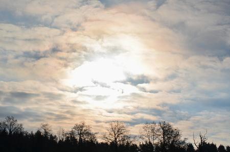 republik: misty winter morning , South Bohemia, Czech Republik