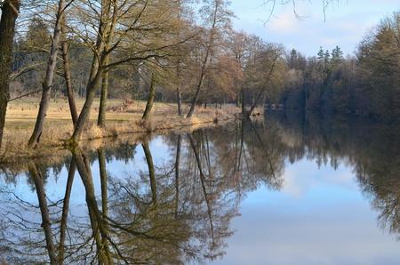 flowing river: calmly flowing river Nezarka, South Bohemia, Czech Republic Stock Photo