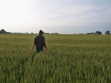 bohemia: relaxation in a field of grain, South Bohemia, Czech Republic Stock Photo