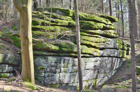 rock formation in the forest, South Bohemia, Czech Republic