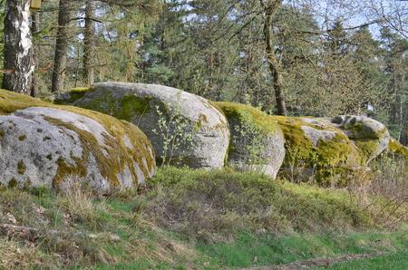rock formation in the forest, Niederosterreich, Austria
