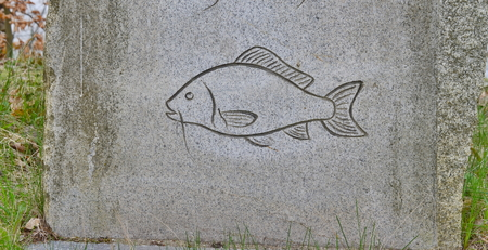 Picture of fish, carved in stone, southern Bohemia, Czech Republic