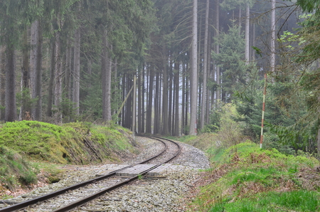 unique historic narrow-gauge railway. South Bohemia, Czech Republic Stock Photo - 78597698