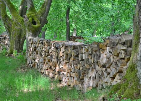 Tradiční skladování dříví, v jižních Čechách. Česká republika Reklamní fotografie