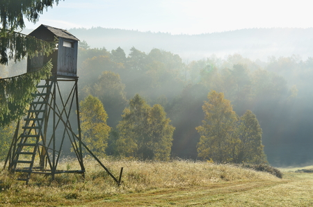 pozorovací místo divoké zvěře. Jižní Čechy, česká republika Reklamní fotografie - 88768780