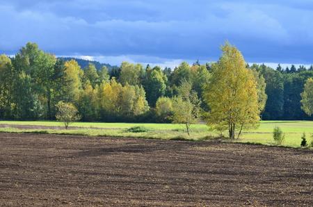 autumn landscape, southern Bohemia . Czech Republic Reklamní fotografie - 90531077