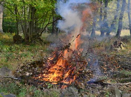 horké uhlí do venkovního krbu. Jižní Čechy Reklamní fotografie - 90413310