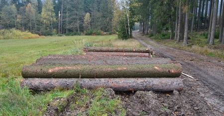 dřevo připravené pro dopravu, jižní Čechy, Česká republika Reklamní fotografie - 90806760