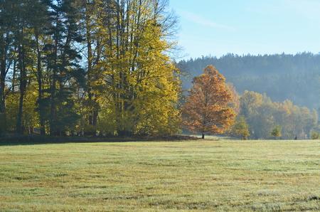 autumn landscape, southern Bohemia . Czech Republic Reklamní fotografie - 94838357